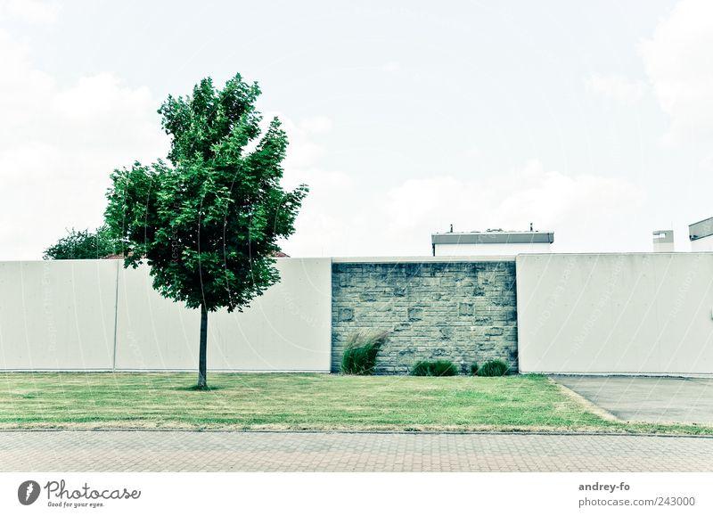 Minimalistisch. Wiese Bauwerk Architektur Mauer Wand Straße Stein modern Sauberkeit grün Zufriedenheit Baum Rasen Fußgängerzone Himmel Betonwand Geometrie