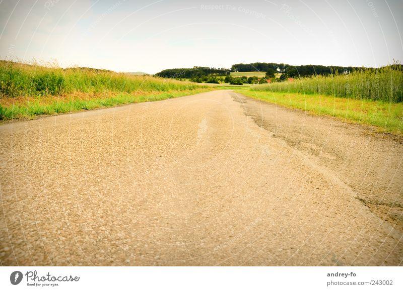 Der Weg. Himmel Natur Sommer Einsamkeit gelb Straße Wege & Pfade Feld leer Perspektive Asphalt Dorf Aussicht Optimismus Straßenrand Stadtrand