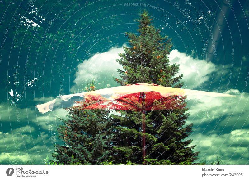 (T)RAUM Himmel Baum Sommer Wolken Ferne Freiheit Bewegung träumen Wetter Feste & Feiern Tanzen Horizont Lifestyle Wandel & Veränderung Idylle Sonnenschirm