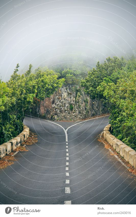 .Entscheidung Freiheit Umwelt Natur Urelemente Luft Wolken Gewitterwolken Felsen Verkehrswege Straßenverkehr Linie wählen entdecken bedrohlich dunkel gruselig