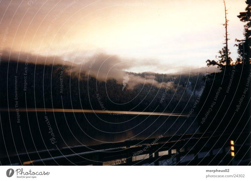 schwebelos weiß Winter Wolken Wald Berge u. Gebirge See leicht