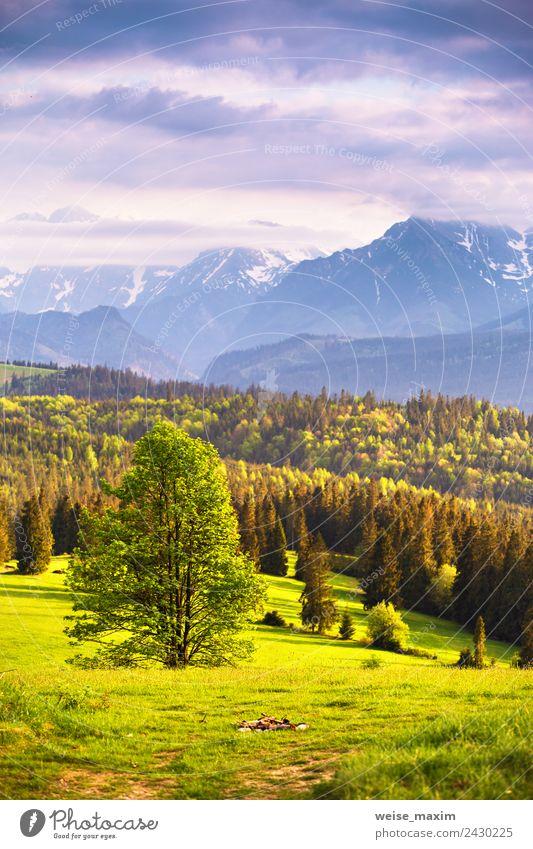 Inspirierendes Abendlicht im Frühjahr. Sonnenuntergang in den Bergen schön Ferien & Urlaub & Reisen Tourismus Sommer Berge u. Gebirge Natur Landschaft Himmel