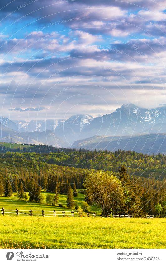 Himmel Natur Ferien & Urlaub & Reisen Sommer blau schön grün Landschaft Sonne Baum Wolken Wald Berge u. Gebirge Straße Frühling Wiese