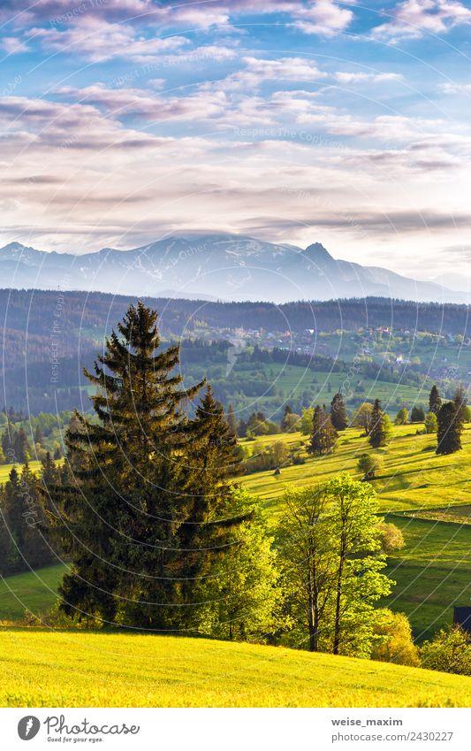 Himmel Natur Ferien & Urlaub & Reisen Sommer blau schön grün Sonne Landschaft Baum Wolken Wald Berge u. Gebirge Frühling Wiese Gras
