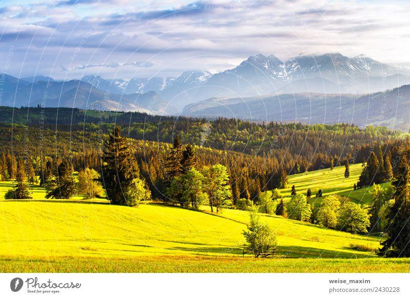 Himmel Natur Ferien & Urlaub & Reisen Sommer blau Pflanze grün Landschaft Sonne Baum Wolken Ferne Wald Berge u. Gebirge Frühling Wiese