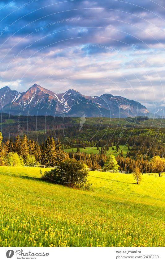 Inspirierendes Abendlicht im Frühjahr. Sonnenuntergang in der Tatra schön Ferien & Urlaub & Reisen Tourismus Sommer Berge u. Gebirge Natur Landschaft Himmel