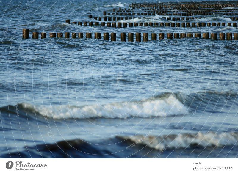 Ostsee Natur Wasser blau Holz Küste Wellen Wind nass Schwimmen & Baden Bucht Nordsee Gischt Buhne