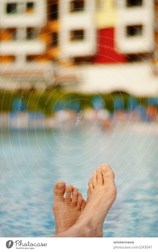 Mensch Wasser schön Ferien & Urlaub & Reisen Sommer Freude Erwachsene Erholung Freiheit Gefühle Glück Fuß Kraft elegant Finger Fröhlichkeit