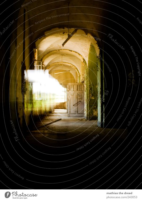 GANG Industrieanlage Fabrik Ruine Bauwerk Gebäude Architektur alt ästhetisch außergewöhnlich dunkel einzigartig schön Flur Torbogen Gang Tür Fenster verfallen
