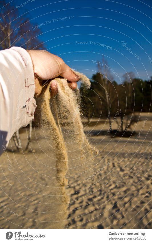 wie gewonnen... Hand Himmel Baum blau Ferien & Urlaub & Reisen Sand Landschaft Umwelt Zeit Hoffnung Sicherheit Abenteuer weich Wüste Vergänglichkeit heiß