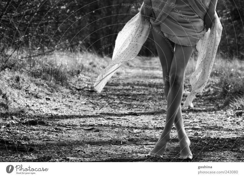 As I Walk Alone Natur Jugendliche schön ruhig Landschaft feminin Erotik Beine Stimmung Park Erde gehen elegant laufen natürlich ästhetisch