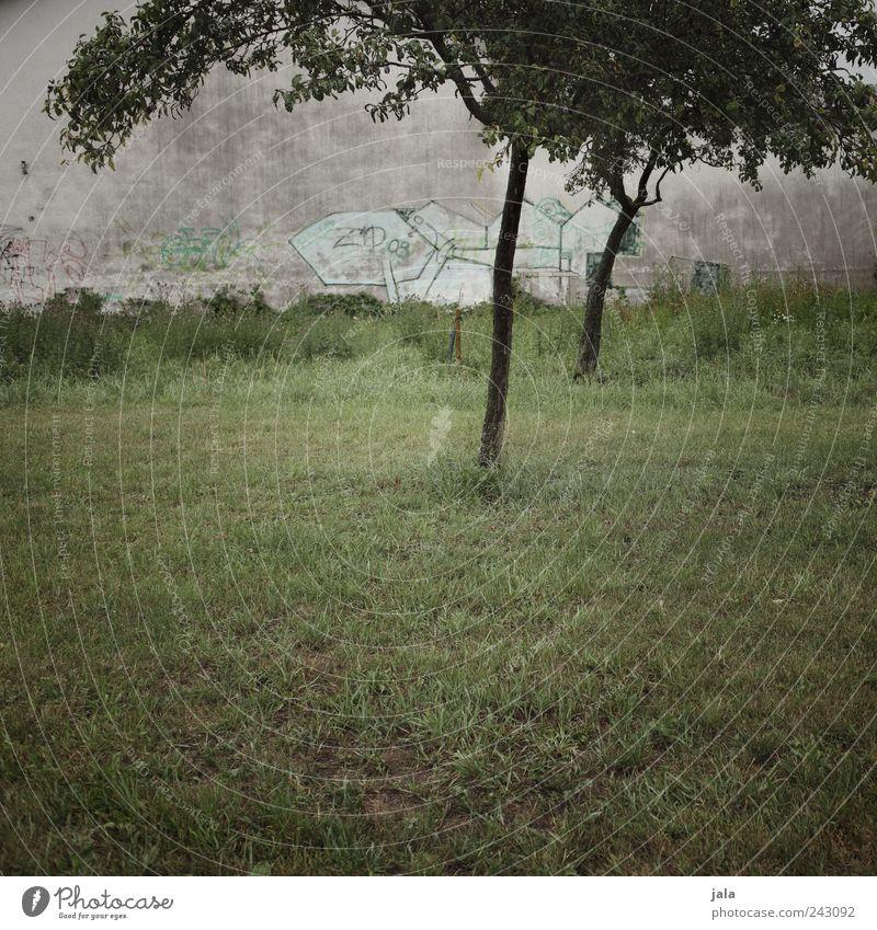 graffiti Natur Pflanze Baum Gras Wiese Haus Bauwerk Mauer Wand Fassade Graffiti trist grau grün Farbfoto Außenaufnahme Menschenleer Textfreiraum unten Tag