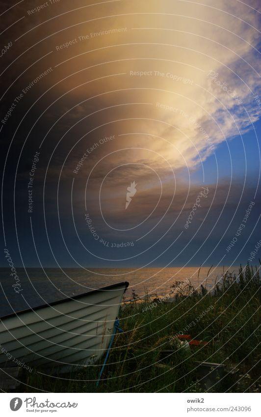 Himmel über Skåne Natur Himmel Meer Pflanze Ferien & Urlaub & Reisen ruhig Wolken Freiheit Landschaft Zufriedenheit Wasserfahrzeug Stimmung Küste Umwelt Horizont Sträucher