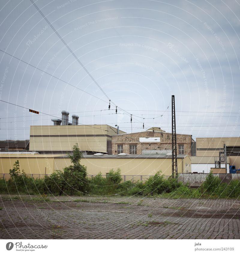 stadtrand Himmel Pflanze Sträucher Grünpflanze Wildpflanze Stadtrand Haus Industrieanlage Fabrik Platz Bauwerk Gebäude Architektur Schienenverkehr trist