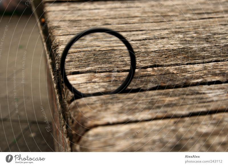 Holzauge sein wachsam! Linse Lupe vergrößert Holzbrett Bank Kreis Stein Beton Glas Metall Streifen groß braun grau schwarz Präzision Platz Brennpunkt Farbfoto