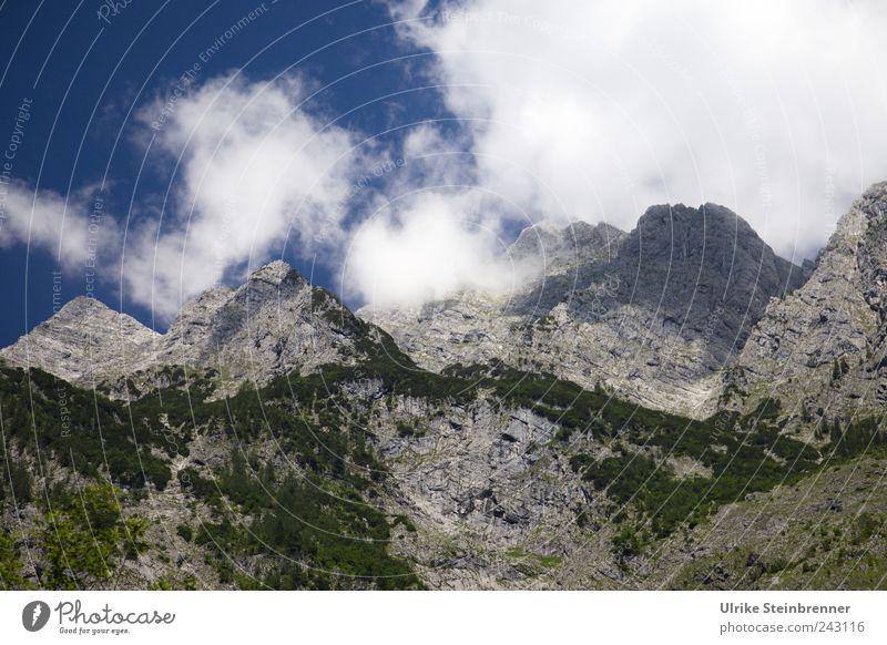 Um seinen Gipfel jagen ... Natur Himmel Baum Pflanze Sommer Wolken Einsamkeit Wald Berge u. Gebirge Landschaft Nebel groß Felsen Sträucher bedrohlich einzigartig