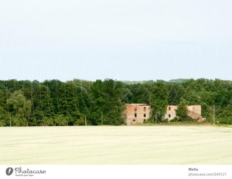 Schöner Wohnen Umwelt Landschaft Feld Wald Haus Ruine Gebäude alt kaputt Vergänglichkeit Wandel & Veränderung Zerstörung Verfall verfallen Farbfoto