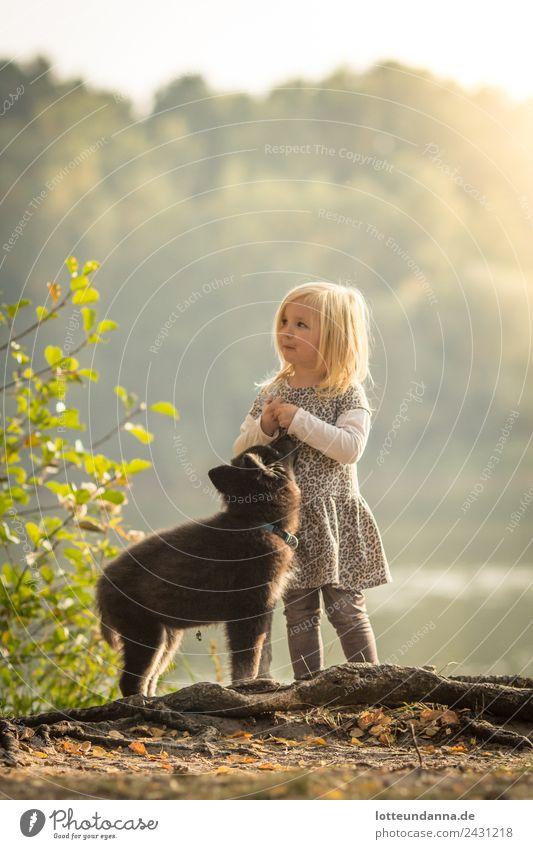 Mädchen mit Welpe am See Haustier Hund Husky 1 Tier Tierjunges füttern genießen stehen Zusammensein Glück niedlich Tierliebe Treue Farbfoto Außenaufnahme