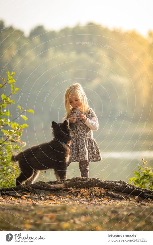 Mädchen mit Hund am See feminin Kleinkind Körper 1 Mensch 3-8 Jahre Kind Kindheit Wasser Sonne Sonnenaufgang Sonnenuntergang Sonnenlicht Sommer Schönes Wetter