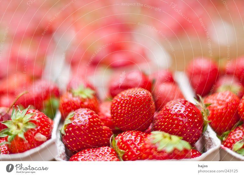 Erdbeeren Sommer rot Frucht leuchten viele Landwirtschaft lecker Markt saftig Forstwirtschaft Dessert Angebot Produkt
