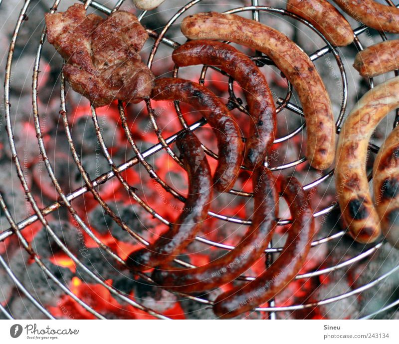 Armes Würstchen! Sommer Ernährung Energie Schönes Wetter heiß genießen Appetit & Hunger Grillen lecker Duft Abendessen Fleisch Mittagessen Grill Erwartung Vorfreude