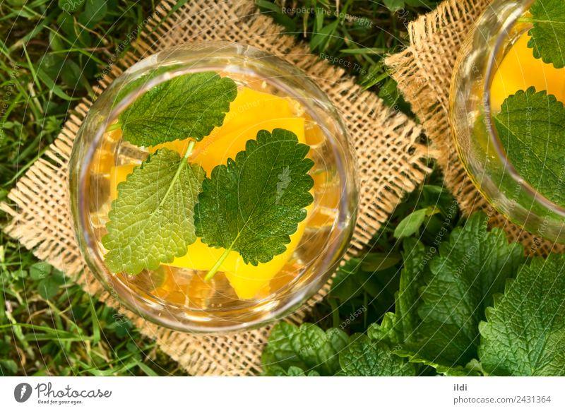 Pfirsich, Zitronenmelisse und Weißweinpunsch Frucht Kräuter & Gewürze Getränk Alkohol Sommer Gras frisch natürlich Lebensmittel trinken Bowle Wein Kühler