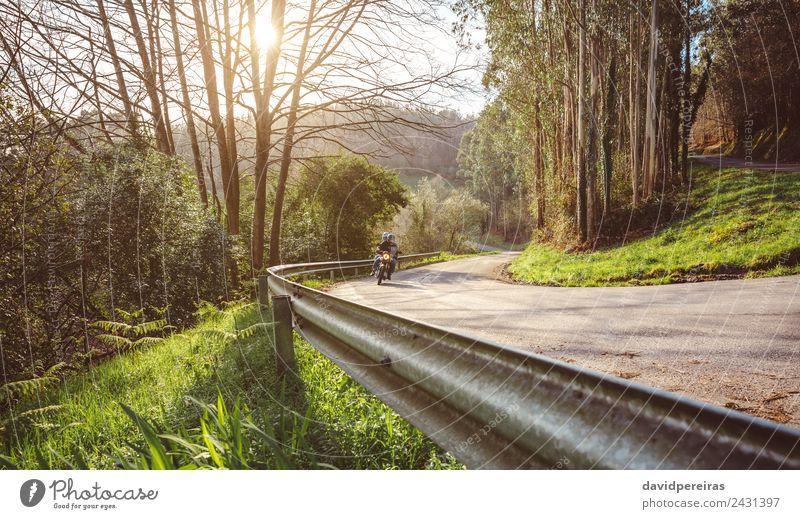 Seniorenpaar mit Motorrad entlang der Forststraße Lifestyle Freizeit & Hobby Ferien & Urlaub & Reisen Tourismus Ausflug Abenteuer Freiheit Paar Erwachsene Natur
