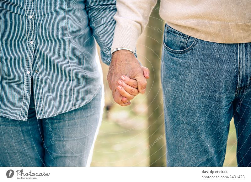 Mensch Natur alt blau Hand Baum Erholung Wald Erwachsene Lifestyle Liebe Familie & Verwandtschaft Paar Zusammensein Freizeit & Hobby stehen