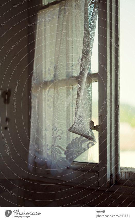 leichte Brise Dorf Haus Einfamilienhaus Fenster alt kalt Gardine Vorhang altmodisch veraltet altehrwürdig Farbfoto Innenaufnahme Detailaufnahme Menschenleer Tag