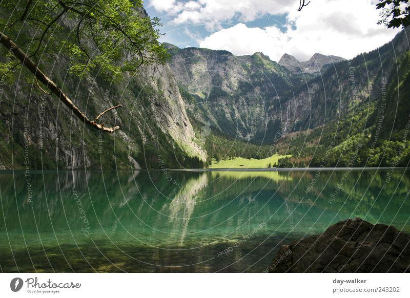 Landscape Königssee Natur Landschaft Pflanze Tier Wasser Himmel Wolken Sommer Schönes Wetter Hügel Felsen Alpen Berge u. Gebirge Gipfel See kalt blau braun grün