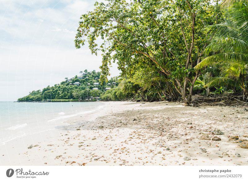 Strand in Thailand Himmel Natur Ferien & Urlaub & Reisen Sommer Pflanze Landschaft Sonne Baum Meer Erholung Ferne Küste Tourismus Wellen Insel