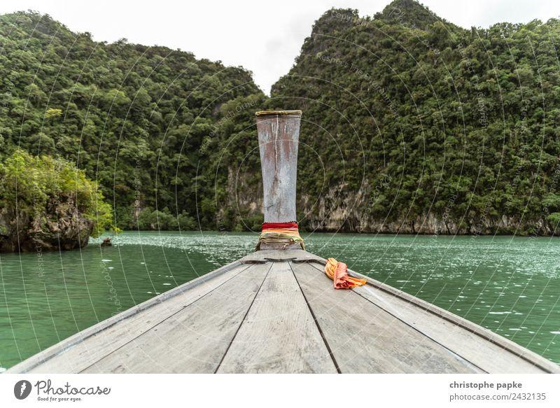 Tour in den Dschungel Himmel Natur Ferien & Urlaub & Reisen Sommer Pflanze Wasser Landschaft Meer Ferne Umwelt Holz Ausflug Wasserfahrzeug Wellen Insel
