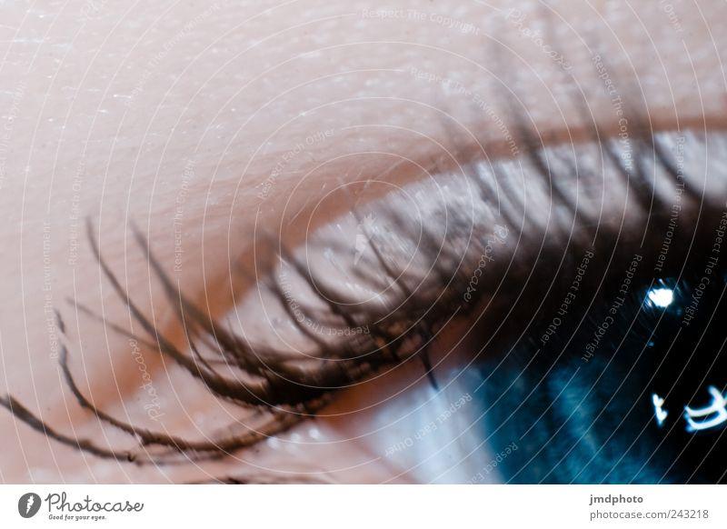 Auge feminin 1 Mensch entdecken glänzend Blick Leben Neugier Interesse träumen Traurigkeit Kontakt Kontrolle Sinnesorgane Wimpern Wimperntusche Augenfarbe