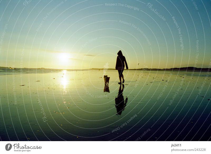 schon schön Frau Mensch Himmel Natur Wasser Sonne Sommer Ferien & Urlaub & Reisen Strand Meer ruhig Tier Erholung Freiheit Umwelt Landschaft
