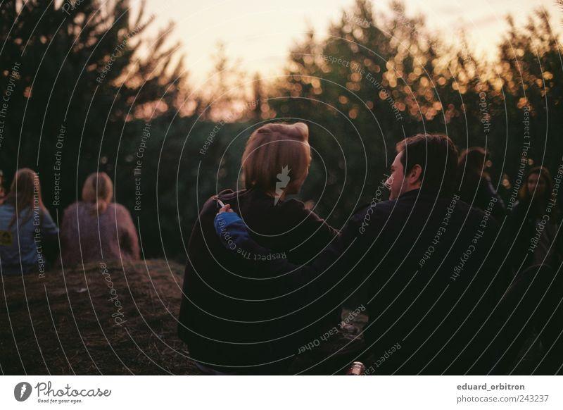 Guten Morgen maskulin Paar 18-30 Jahre Jugendliche Erwachsene Natur Sonnenaufgang Sonnenuntergang Sommer Baum Wald Hügel Pullover beobachten berühren sitzen