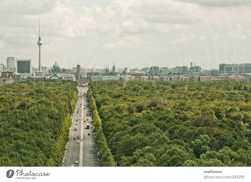 Ausblick auf Berlin Fernsehturm Skyline Hauptstadt Städtereise Stadtzentrum Park Wahrzeichen Verkehrswege Straße des 17. Juni grün Stadtwald Leben