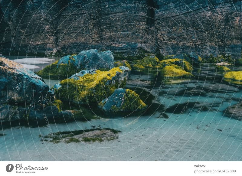 Strand mit Moossteinen, Ribadeo, lugo, galicisch, spanisch exotisch Ferien & Urlaub & Reisen Tourismus Meer Insel Wellen Umwelt Natur Landschaft Sand Wasser