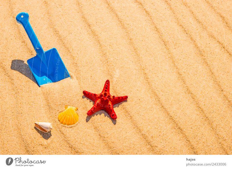 Schaufel und Seestern am Strand Freude Erholung Ferien & Urlaub & Reisen Sommer Sand Ostsee gelb Kindheit Tourismus blau Spielzeug sandeln spielen rot Muschel