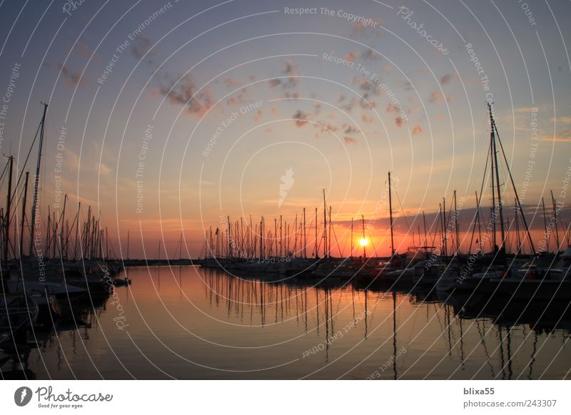 Jachthafen II Sommer ruhig Deutschland Horizont gold Europa Hafen Ostsee Fernweh Segelboot Kleinstadt Morgendämmerung Reflexion & Spiegelung Kühlungsborn