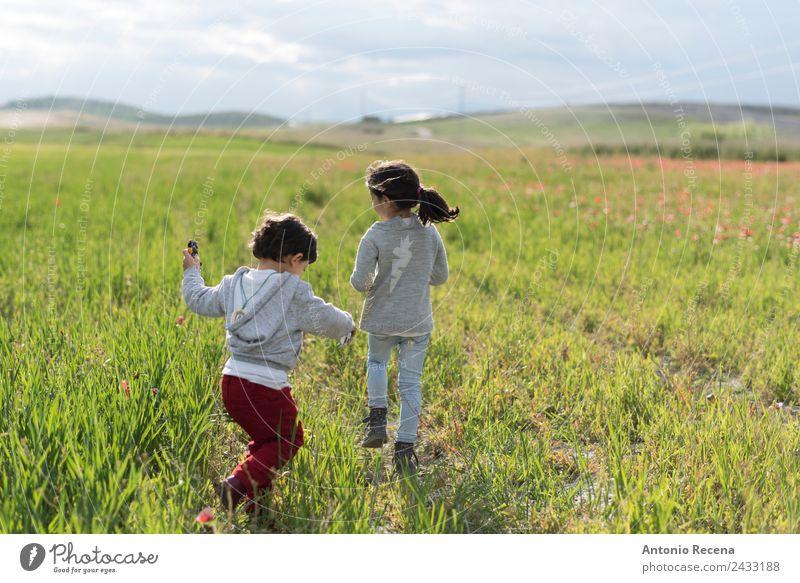 Kindheit Spielen Mensch Baby Mädchen Junge Schwester 2 1-3 Jahre Kleinkind 3-8 Jahre genießen laufen rennen schön Hermandad Geschwister Frühling Feld Rücken