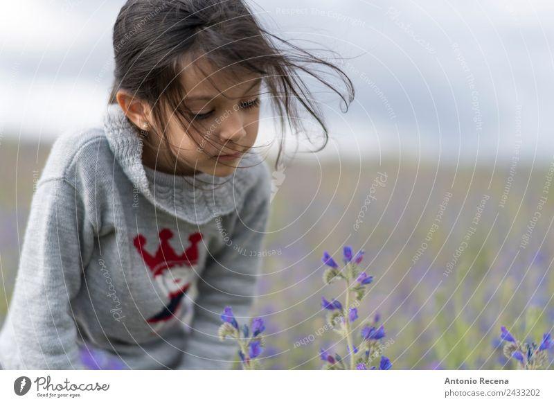 Blumen Mensch Kind Mädchen Kindheit 3-8 Jahre Gras Park brünett niedlich Gelassenheit riechend Frühling 5s 5 Jahre alt eine Feld Geruch Spanisch dunkelhaarig