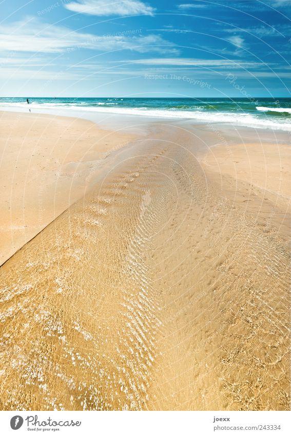 Immer Meer Ferien & Urlaub & Reisen Ferne Freiheit Sommer Sommerurlaub Strand Wellen 1 Mensch Wasser Himmel Wolken Schönes Wetter Nordsee blau braun grün