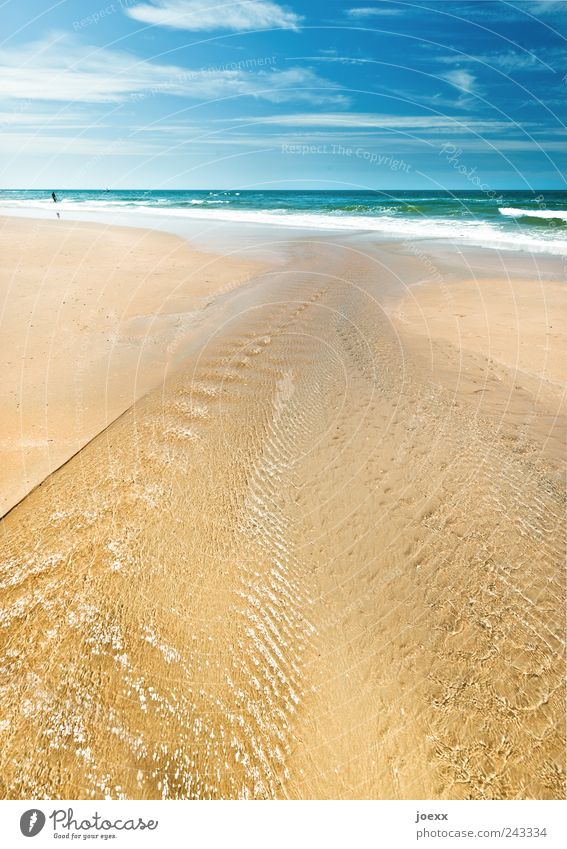 Immer Meer Mensch Wasser Himmel grün blau Sommer Strand Ferien & Urlaub & Reisen Wolken Ferne Freiheit braun Wellen Freizeit & Hobby Schönes Wetter