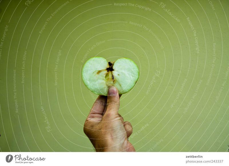 Halber Apfel Hand Pflanze Blume Blüte Garten Frucht Lebensmittel Wachstum Ernährung Teilung Ernte Bioprodukte Hälfte Picknick Daumen