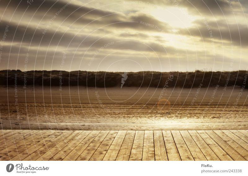 the golden Path Ferien & Urlaub & Reisen Ausflug Strand Umwelt Natur Himmel Wolken Sonne Sonnenaufgang Sonnenuntergang Küste Nordsee leuchten glänzend hell nass