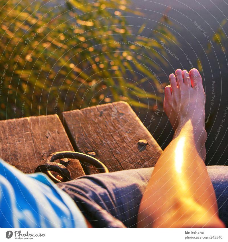 entspannen Mensch Wasser Ferien & Urlaub & Reisen Sommer Meer Erholung Wärme See Beine Paar Fuß Zusammensein gold sitzen maskulin Ausflug