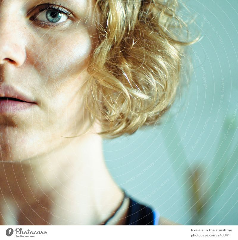goldmarie Frau Mensch Jugendliche blau schön Gesicht Auge Leben feminin Kopf Haare & Frisuren Erwachsene Mund blond glänzend Nase