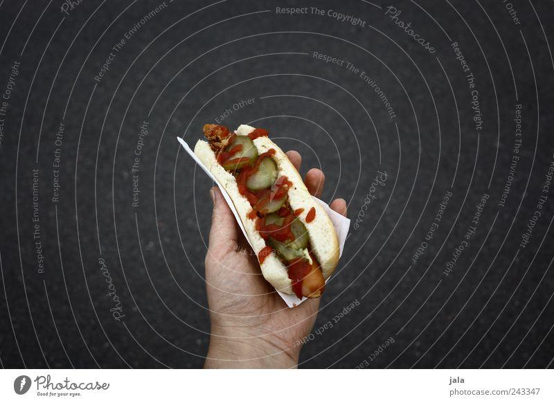 hotdog Lebensmittel Wurstwaren Brötchen Ernährung Fastfood Hand lecker Hotdog haltend Farbfoto Außenaufnahme Textfreiraum links Textfreiraum rechts