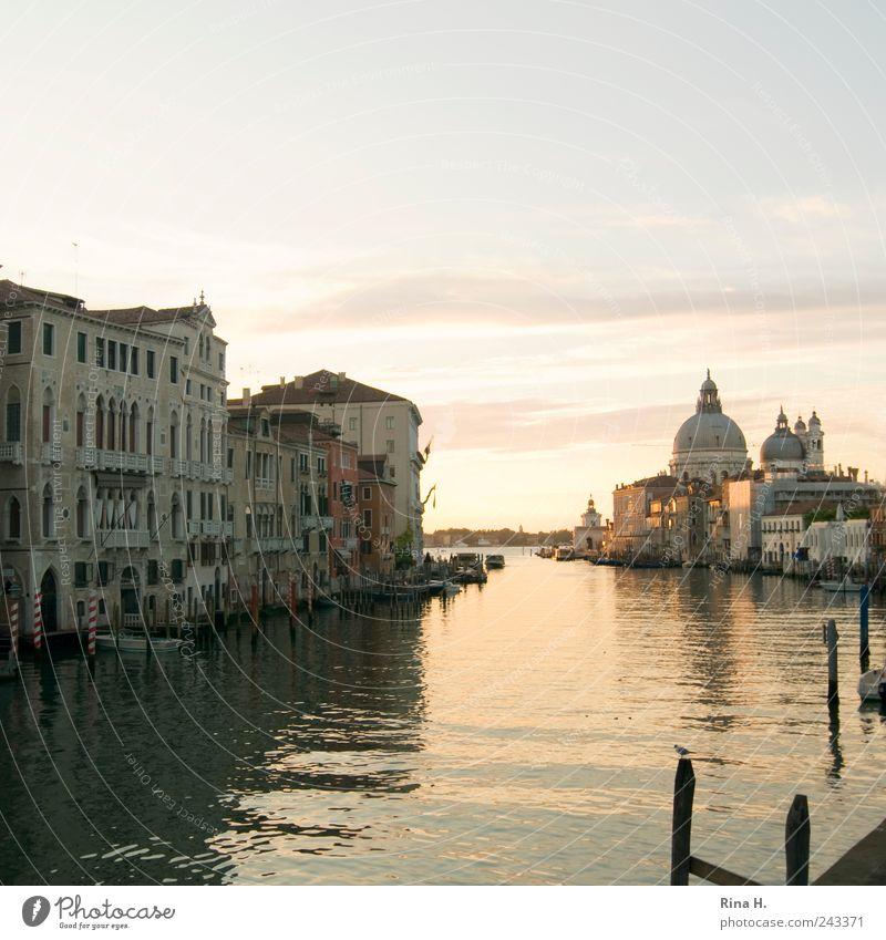 Canale Grande Ferien & Urlaub & Reisen Tourismus Ausflug Sightseeing Städtereise Sommer Schönes Wetter Venedig Altstadt Menschenleer Sehenswürdigkeit