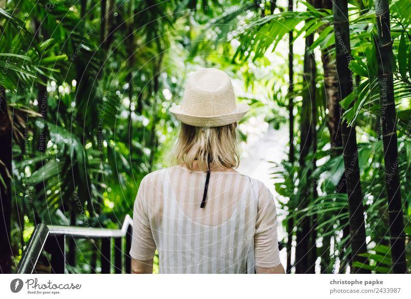 Way to the Jungle Frau Mensch Ferien & Urlaub & Reisen Sommer Pflanze Baum Blatt Wald Erwachsene Wege & Pfade Garten Ausflug Park blond Rücken Abenteuer